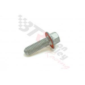 CHEVROLET PERFORMANCE MAIN OUTER BOLT/CAM GEAR BOLT 12556127